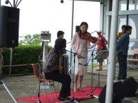 Violin05094
